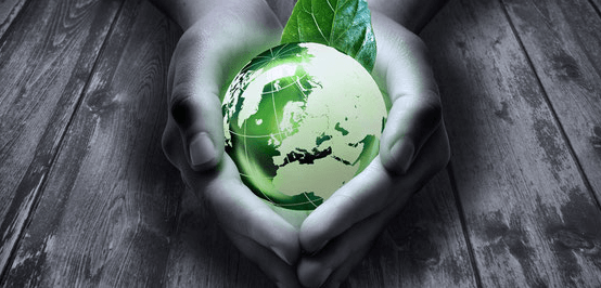 Recyclix, Geld verdinen, Grün, Buisiness, Millionen, Müll, Recycling, Reich, Rendite, Money maker, Grün verdinen, recyclix.com, recyclix login, recyclix erfahrung, recyclix betrug, recyclix seriös, recyclix scam, recyclix deutsch, recyclix erfahrungen, recyclix.de, recyclix auszahlung, recylix polen, Recyclix Test, Recyclix Erfahrungsbericht, Recyclix Testbericht, Recyclix Granulat, Recyclix Anleitung, Recyclix Mit Müll Geld verdienen, Recyclix Investment, Recyclix investieren