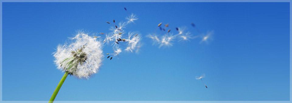 Fresh Air Ozonisator Erfahrungen, Fresh Air Ozonisator Test, Fresh Air Ozonisator Review, Fresh Air Ozonisator Kritik, Fresh Air Ozonisator kaufen, luftwaescher allergiker, luftwaescher bei asthma, luftwaescher empfehlung, luftwaescher erfahrungen, luftwaescher fuer allergiker, luftwaescher gegen schimmel, luftwaescher heuschnupfen, luftwaescher im test, luftwaescher kaufen, luftwaescher test, luftreiniger empfehlung, luftreiniger erfahrungen, luftreiniger fuer allergiker, luftreiniger gegen rauch, luftreiniger gegen schimmel, luftreiniger guenstig, luftreiniger heuschnupfen, luftreiniger test, bester Luftreiniger