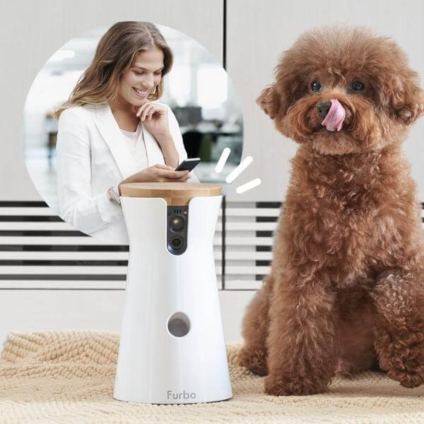 furbo dog camera, furbo deutsch, furbo hundekamera, furbo preis, furbo auf deutsch, furbo apple watch, furbo kamera, furbo dog cam, furbo erfahrungen, furbo hunde, furbo hundekamera erfahrungen, furbo test, furbo vs petcub, furbo vs pawbo, furbo Review, furbo Bewertung, furbo kaufen, furbo dog camera kaufen, furbo dog camera deutschland, furbo hundekamera kaufen, furbo pet cam kaufen, frubo Testbericht