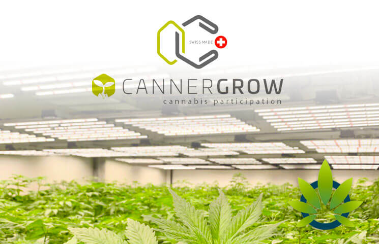 cannergrow cannabis, cannergrow serioes, cannergrow scam, cannergrow kritik